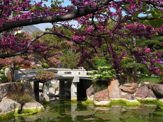 JAPÁNKERT 2 e1303282535911 A japánkert művészete