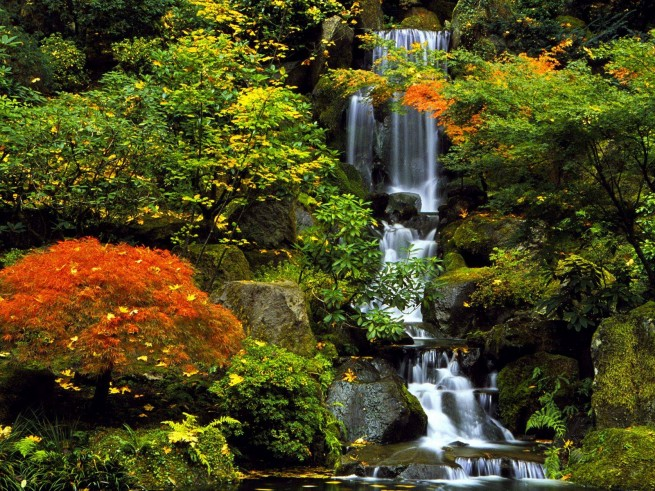 japan kert 11 e1303282806263 A japánkert művészete