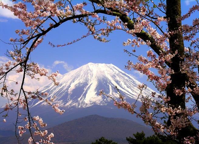 Cherry Blossoms Wallpaper e1334490417224 Japán cseresznyefa virágzás