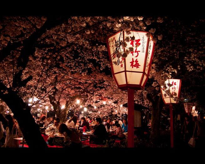 lee walker hanami in kyoto e1334495140770 Japán cseresznyefa virágzás