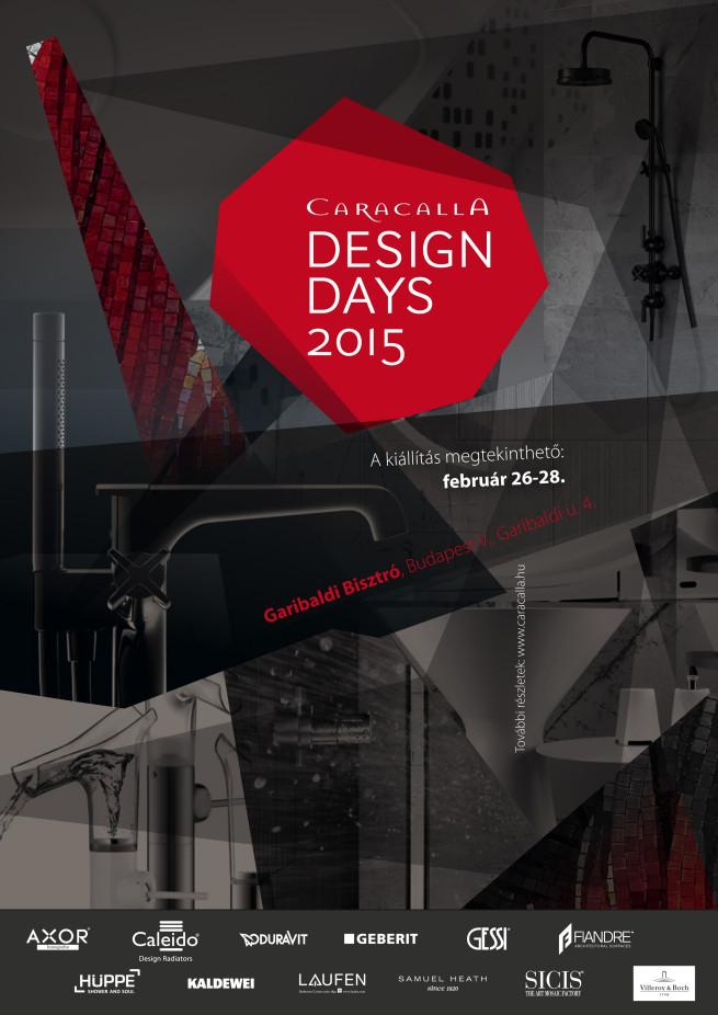 CDD_2015_plakát